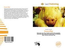 Bookcover of Essex (Pig)