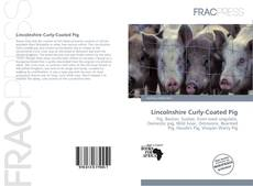 Bookcover of Lincolnshire Curly-Coated Pig
