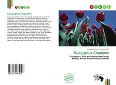 Capa do livro de Eucalyptus Copulans
