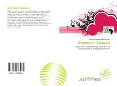 Bookcover of Dromkeen Ambush