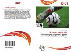 Buchcover von Juan Goyoneche