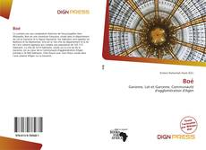 Bookcover of Boé