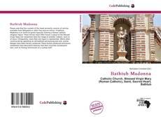Capa do livro de Bathtub Madonna