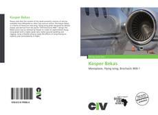 Kasper Bekas的封面