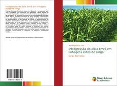 Copertina di Introgressão do alelo bmr6 em linhagens elites de sorgo