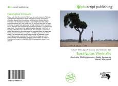 Обложка Eucalyptus Viminalis
