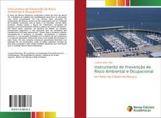 Instrumento de Prevenção de Risco Ambiental e Ocupacional的封面