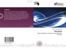 Bookcover of Amylase