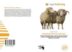 Bookcover of Blackhead Persian (Sheep)