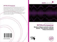 Biff Blumfumgagnge的封面