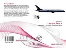 Bookcover of Luenger Beta 1