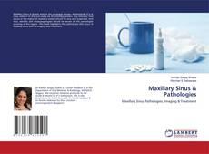 Borítókép a  Maxillary Sinus & Pathologies - hoz
