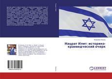 Bookcover of Нацрат Илит: историко-краеведческий очерк