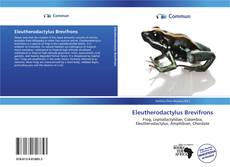 Portada del libro de Eleutherodactylus Brevifrons