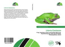 Bookcover of Litoria Castanea