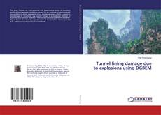 Bookcover of Tunnel lining damage due to explosions using DGBEM