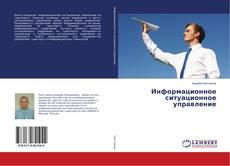 Информационное ситуационное управление的封面