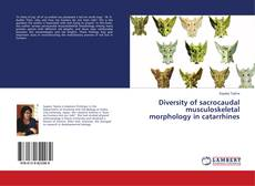 Bookcover of Diversity of sacrocaudal musculoskeletal morphology in catarrhines