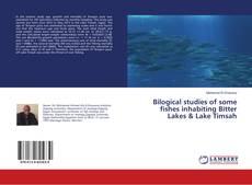 Обложка Bilogical studies of some fishes inhabiting Bitter Lakes & Lake Timsah