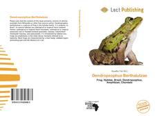 Couverture de Dendropsophus Berthalutzae