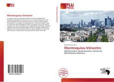 Montesquieu-Volvestre kitap kapağı