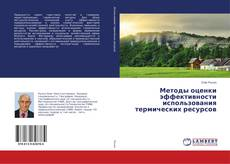 Обложка Методы оценки эффективности использования термических ресурсов