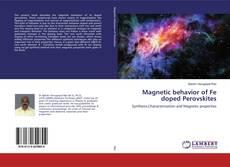 Copertina di Magnetic behavior of Fe doped Perovskites