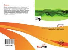 Bookcover of Essure