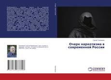 Очерк наркотизма в современной России的封面
