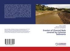 Borítókép a  Erosion of Channel Beds covered by Cohesive Sediments - hoz