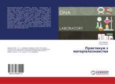 Bookcover of Практикум з матеріалознавства
