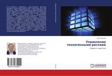 Bookcover of Управление техногенными рисками