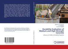 Bookcover of Durability Evaluation of Medium and High Strength Concrete
