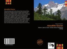 Bookcover of Astudillo Glacier