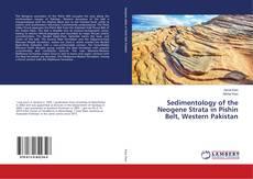 Bookcover of Sedimentology of the Neogene Strata in Pishin Belt, Western Pakistan