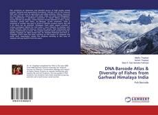 Copertina di DNA Barcode Atlas & Diversity of Fishes from Garhwal Himalaya India
