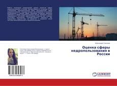 Bookcover of Оценка сферы недропользования в России