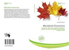 Bookcover of Marsdenia Flavescens