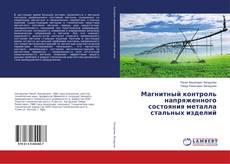 Buchcover von Магнитный контроль напряженного состояния металла стальных изделий