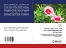 Callus Induction and Micropropagation of Carnation kitap kapağı