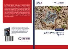 Bookcover of Çubuk (Ankara) Yöresi Agatları