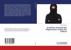 Buchcover von A Nation Imprisoned: Afghanistan under the Taliban