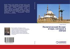 Bookcover of Политический Ислам: вчера, сегодня и завтра