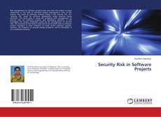 Portada del libro de Security Risk in Software Projects