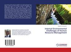Bookcover of Internal Environmental Challenges of Human Resource Management