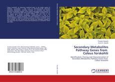 Secondary Metabolites Pathway Genes from Coleus forskohlii的封面