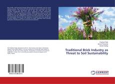 Capa do livro de Traditional Brick Industry as Threat to Soil Sustainability