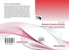Portada del libro de Antonio Canales Rosillo