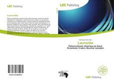 Buchcover von Laurentia