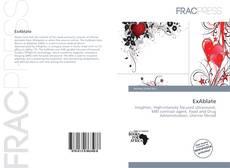 ExAblate kitap kapağı